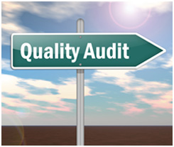 Audits Services